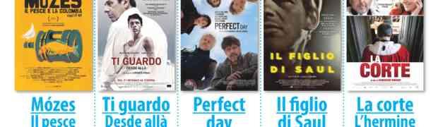 """Ecco il nuovo programma del Piccolo Cineclub Tirreno. Venerdì 01 aprile alle ore 21.30 - in anteprima provinciale - proietteremo  la divertente commedia surreale """"Mozes, il pesce e la colomba"""", vincitrice dell' ultimo Bergamo Film Meeting"""